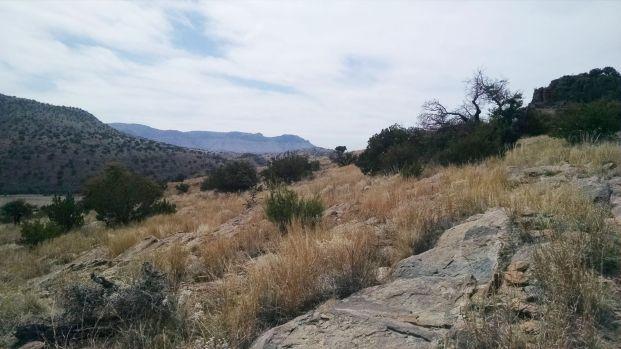 grassy hillside cc