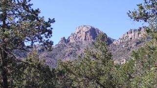 Mt Livermore portrait